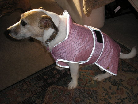 Little Tilly sent in her picture sporting her new pink coat. spring 2015\\n\\n04/03/2015 22:00